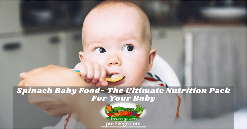 spinach baby food